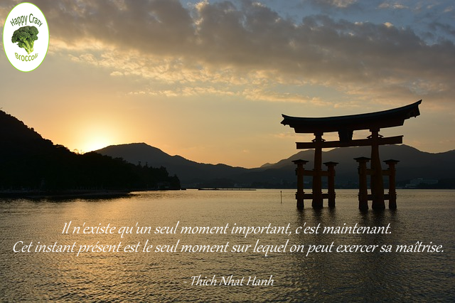 instant-present-thich-nhat-hanh