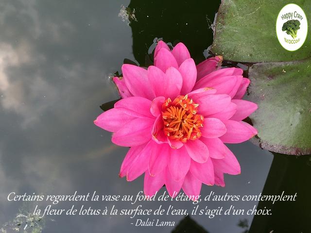 lotus-dalai-lama