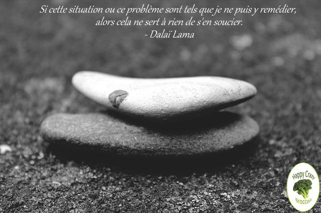 souci-dalai-lama